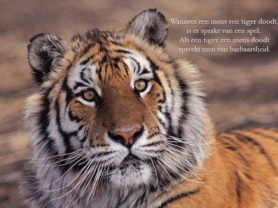 De mensheid heeft de aarde in een hel voor dieren veranderd. Arthur Schopenhauer