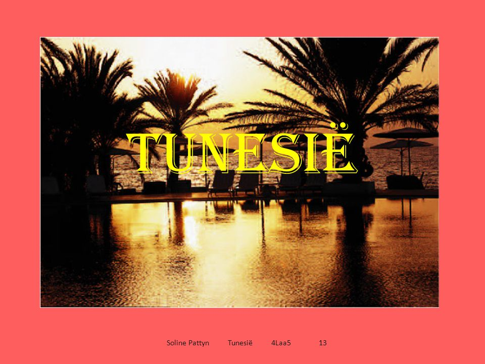 Activiteiten Luieren (dinsdag) Luieren (dinsdag) Soline Pattyn Tunesië 4Laa5 13