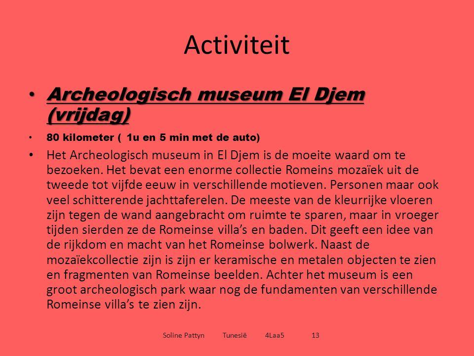 Activiteit Archeologisch museum El Djem (vrijdag) Archeologisch museum El Djem (vrijdag) 80 kilometer ( 1u en 5 min met de auto) Het Archeologisch mus