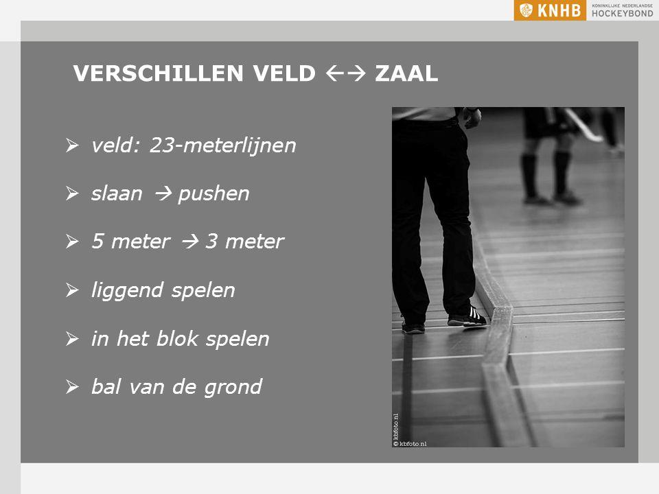 VERSCHILLEN VELD  ZAAL  veld: 23-meterlijnen  slaan  pushen  5 meter  3 meter  liggend spelen  in het blok spelen  bal van de grond