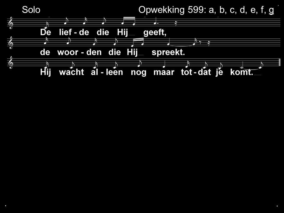 ... Opwekking 599: a, b, c, d, e, f, gSolo