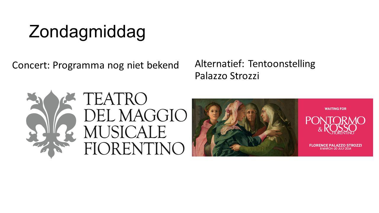 Zondagmiddag Alternatief: Tentoonstelling Palazzo Strozzi Concert: Programma nog niet bekend