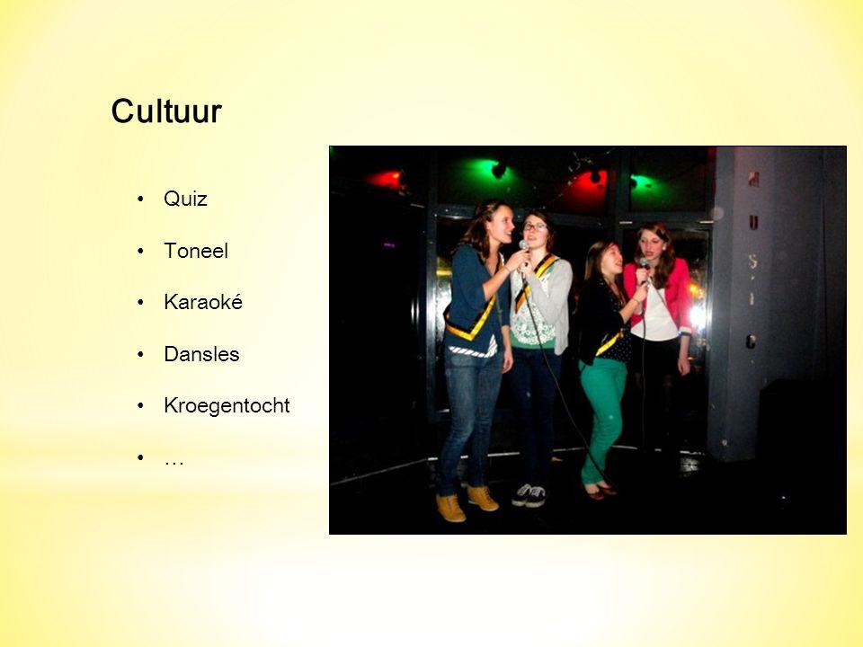 Cultuur Quiz Toneel Karaoké Dansles Kroegentocht …