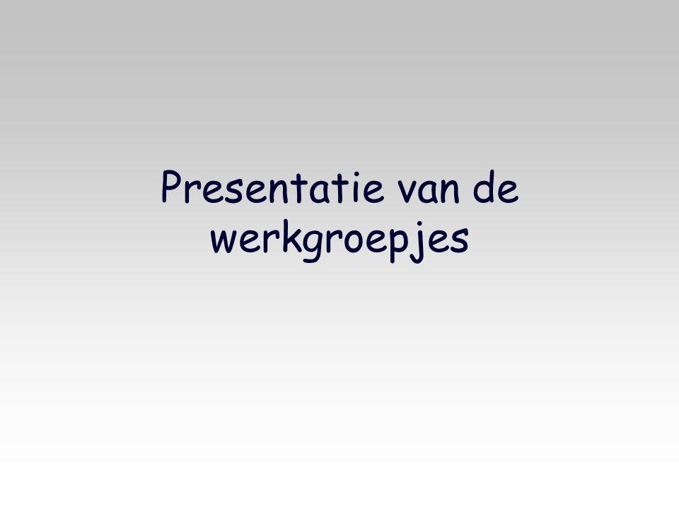 Presentatie van de werkgroepjes
