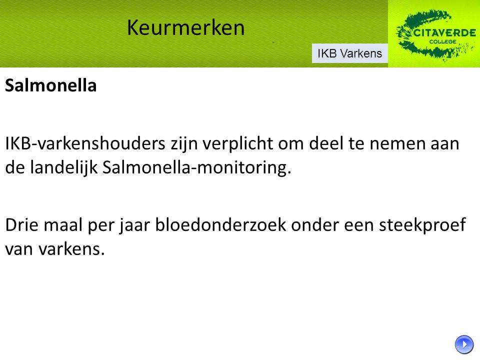 Salmonella IKB-varkenshouders zijn verplicht om deel te nemen aan de landelijk Salmonella-monitoring. Drie maal per jaar bloedonderzoek onder een stee