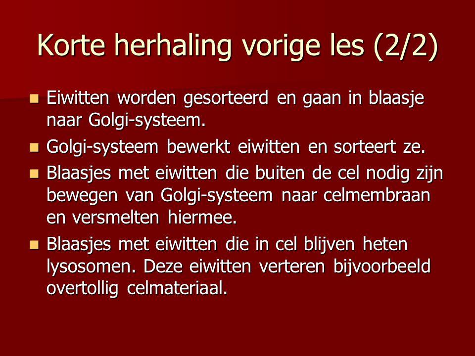 Korte herhaling vorige les (2/2) Eiwitten worden gesorteerd en gaan in blaasje naar Golgi-systeem. Eiwitten worden gesorteerd en gaan in blaasje naar