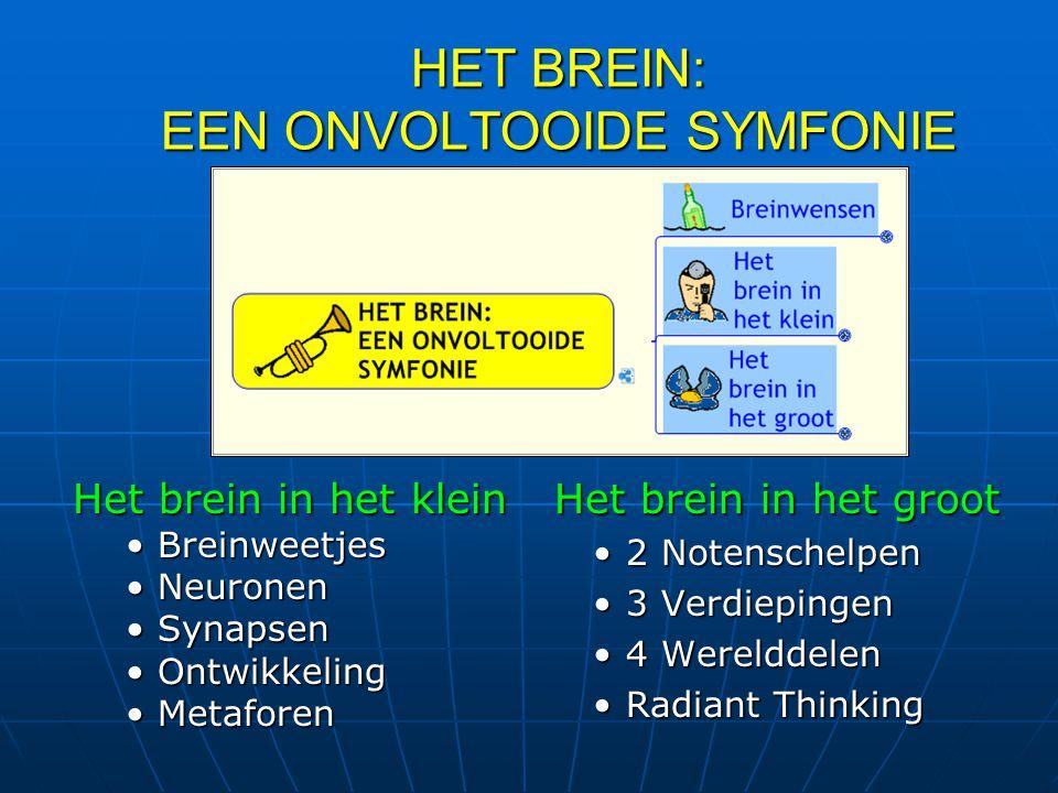 HET BREIN: EEN ONVOLTOOIDE SYMFONIE Het brein in het groot Het brein in het groot 2 Notenschelpen 3 Verdiepingen 4 Werelddelen Radiant Thinking Het br