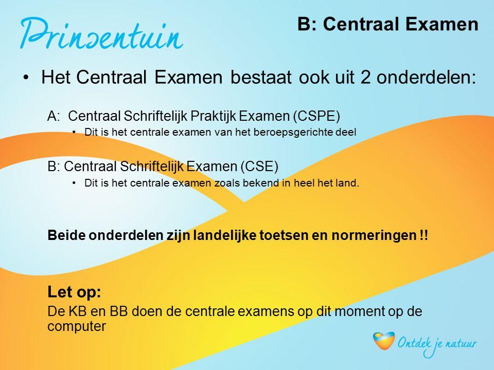 B: Centraal Examen Het Centraal Examen bestaat ook uit 2 onderdelen: A: Centraal Schriftelijk Praktijk Examen (CSPE) Dit is het centrale examen van he