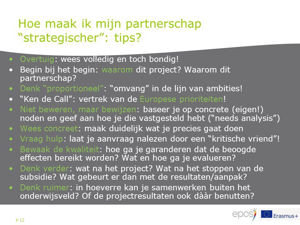 """P 12 Hoe maak ik mijn partnerschap """"strategischer"""": tips? Overtuig: wees volledig en toch bondig! Begin bij het begin: waarom dit project? Waarom dit"""