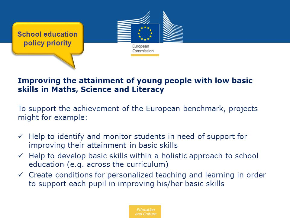 Education and Culture Improving the attainment of young people with low basic skills in Maths, Science and Literacy To support the achievement of the
