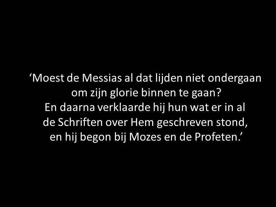 'Moest de Messias al dat lijden niet ondergaan om zijn glorie binnen te gaan? En daarna verklaarde hij hun wat er in al de Schriften over Hem geschrev