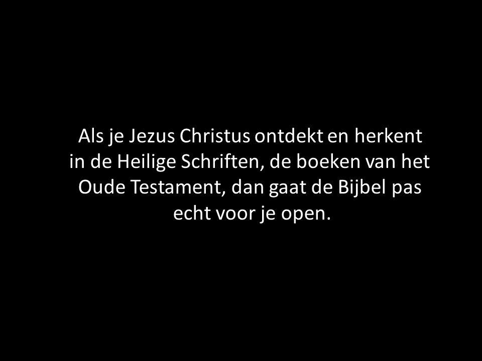 Als je Jezus Christus ontdekt en herkent in de Heilige Schriften, de boeken van het Oude Testament, dan gaat de Bijbel pas echt voor je open.