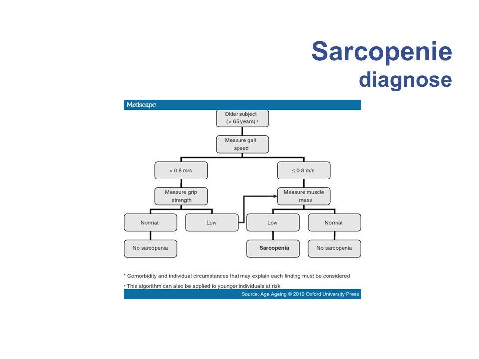 Sarcopenie diagnose 23