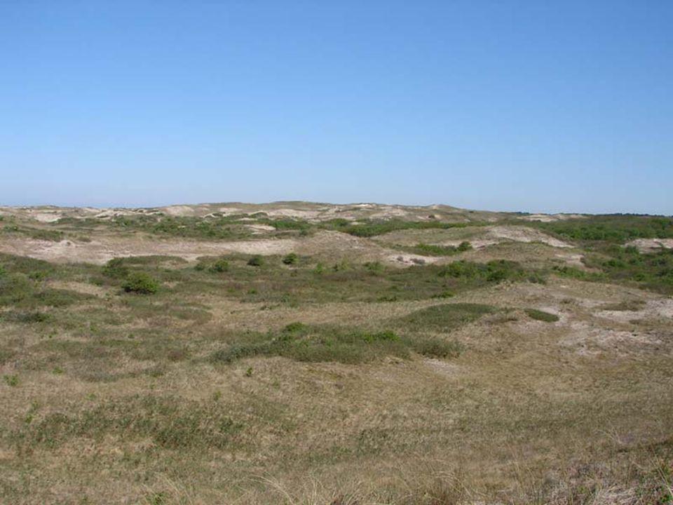 Trekstrategie en trend bij soorten van struwelen 1 Standvogels 2 Korte afstandtrekkers 3 Lange afstandtrekkers