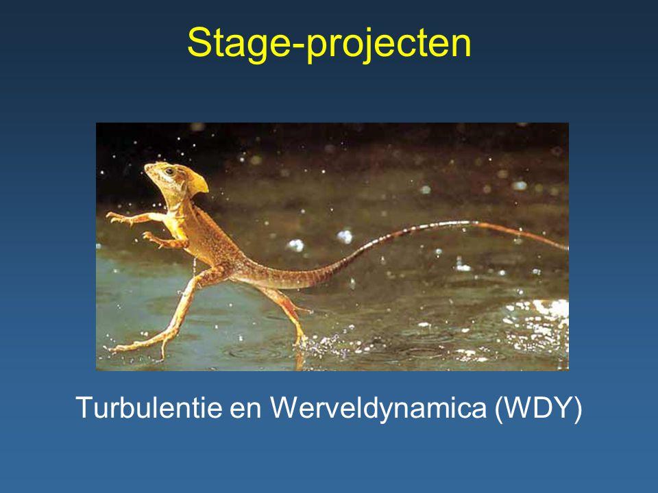 Stage-projecten Turbulentie en Werveldynamica (WDY)