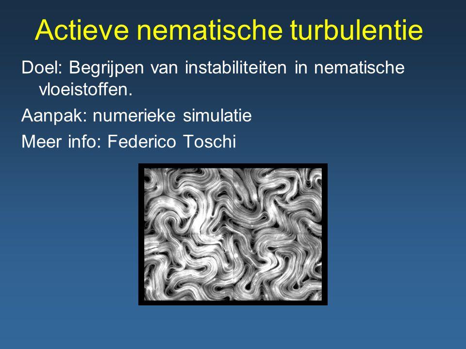 Actieve nematische turbulentie Doel: Begrijpen van instabiliteiten in nematische vloeistoffen.