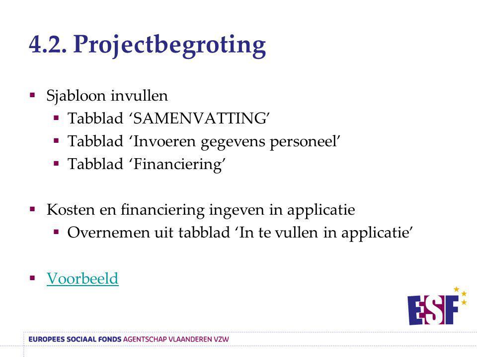 4.2. Projectbegroting  Sjabloon invullen  Tabblad 'SAMENVATTING'  Tabblad 'Invoeren gegevens personeel'  Tabblad 'Financiering'  Kosten en financ