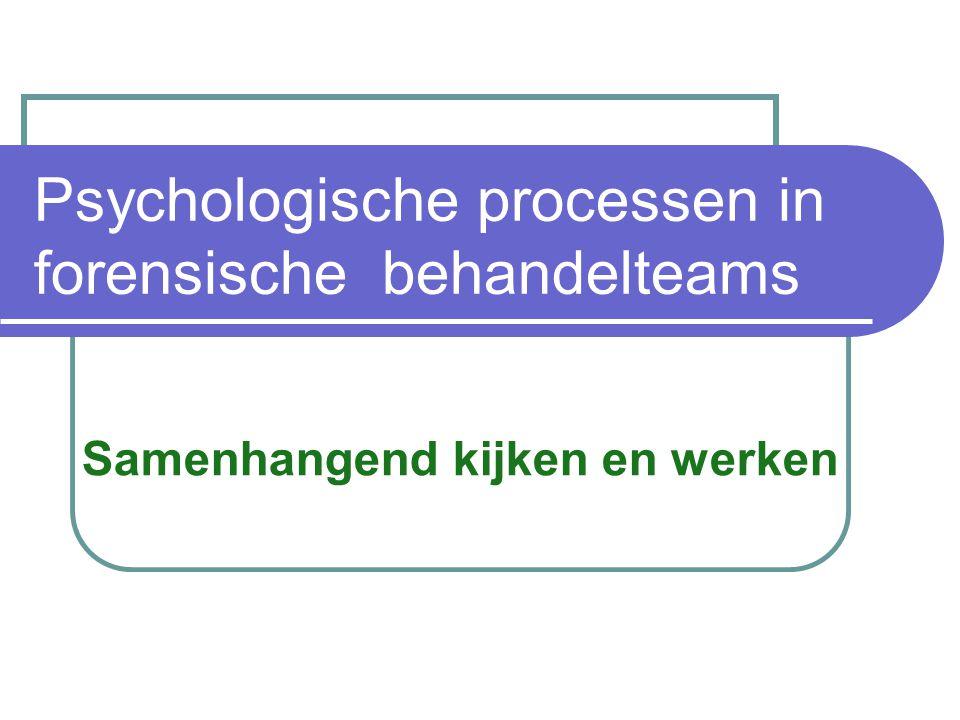 Psychologische processen in forensische behandelteams Samenhangend kijken en werken