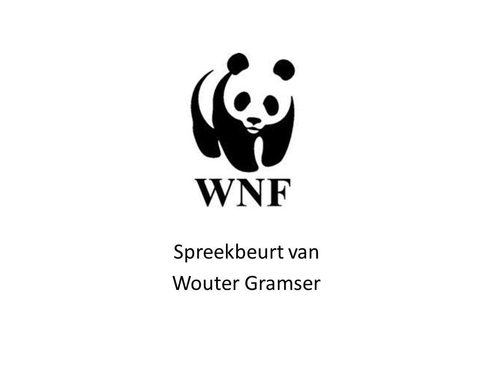Inhoud 1.Doel van het WNF 2.Geschiedenis 3.Wat doet het WNF 4.Bedreigde dieren 5.Top 10 bedreigde dieren 6.Filmpje 7.Quiz 8.Vragen