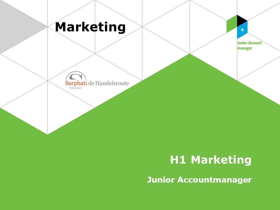 Marketing H1 Marketing Junior Accountmanager