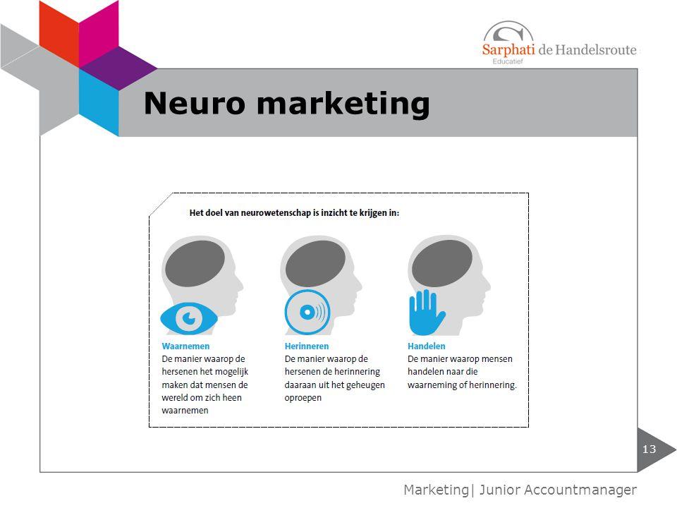 13 Marketing| Junior Accountmanager Neuro marketing