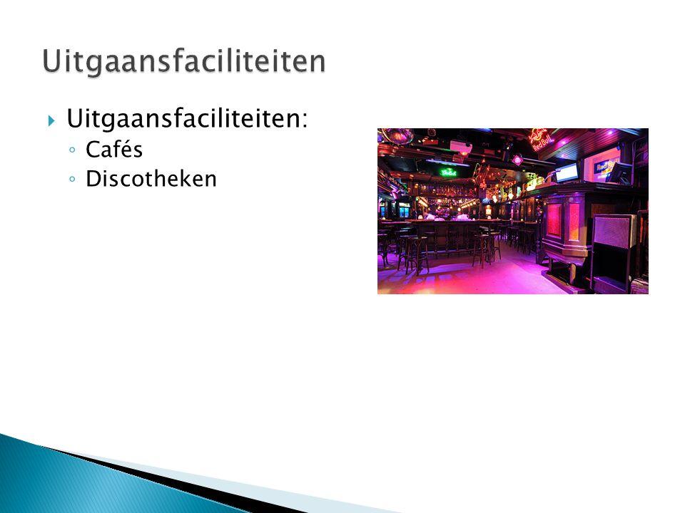  Uitgaansfaciliteiten: ◦ Cafés ◦ Discotheken