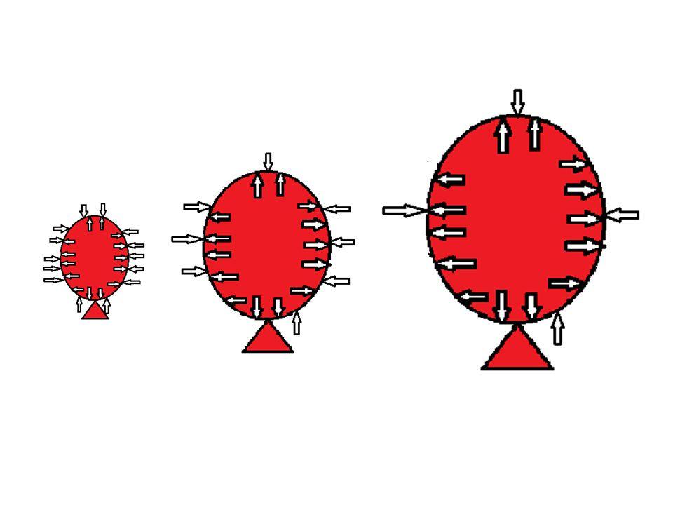 Conclusie proef 6 Proef 6, water in de vacuümstolp – Als het de luchtdruk in de vacuümstolp lager wordt gaat het water koken, maar het wordt niet warm.