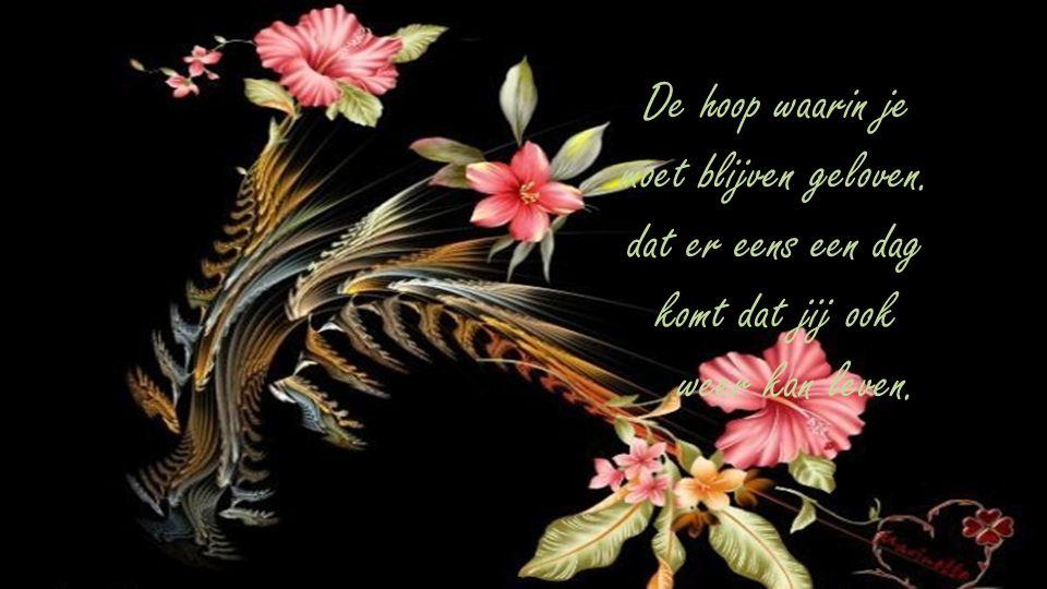 Als er hoop is kun je er ook naar toe leven. De hoop die je doet streven naar een beter leven.