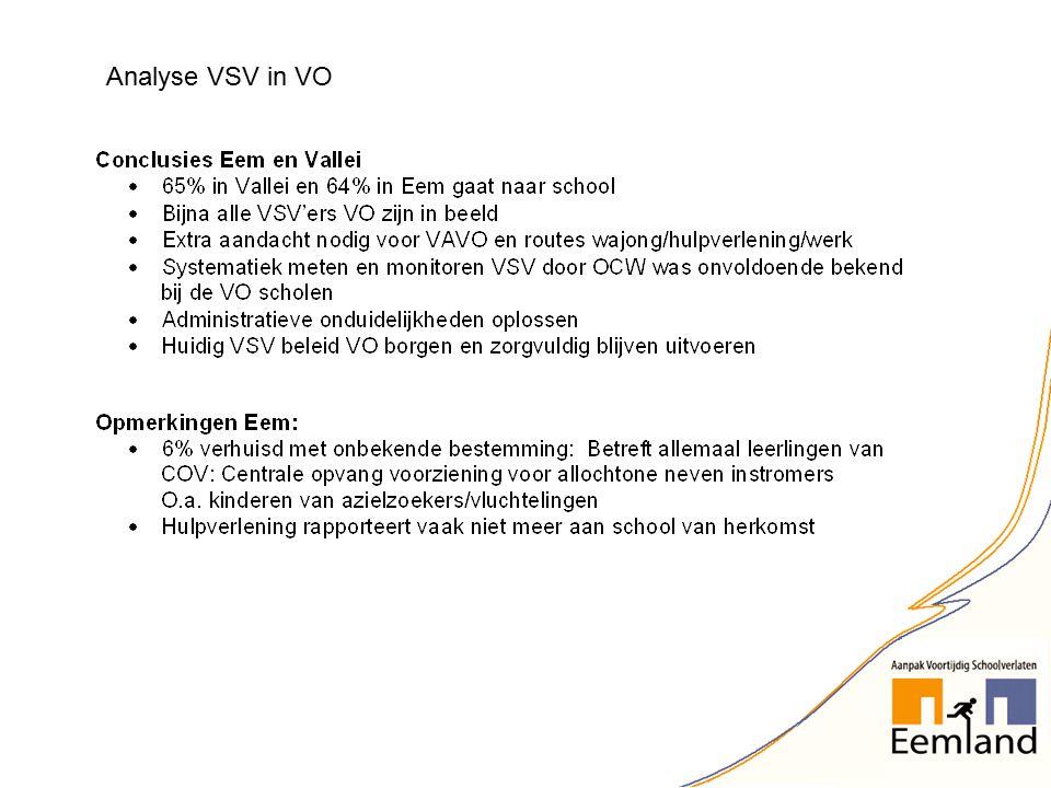 Analyse VSV in VO