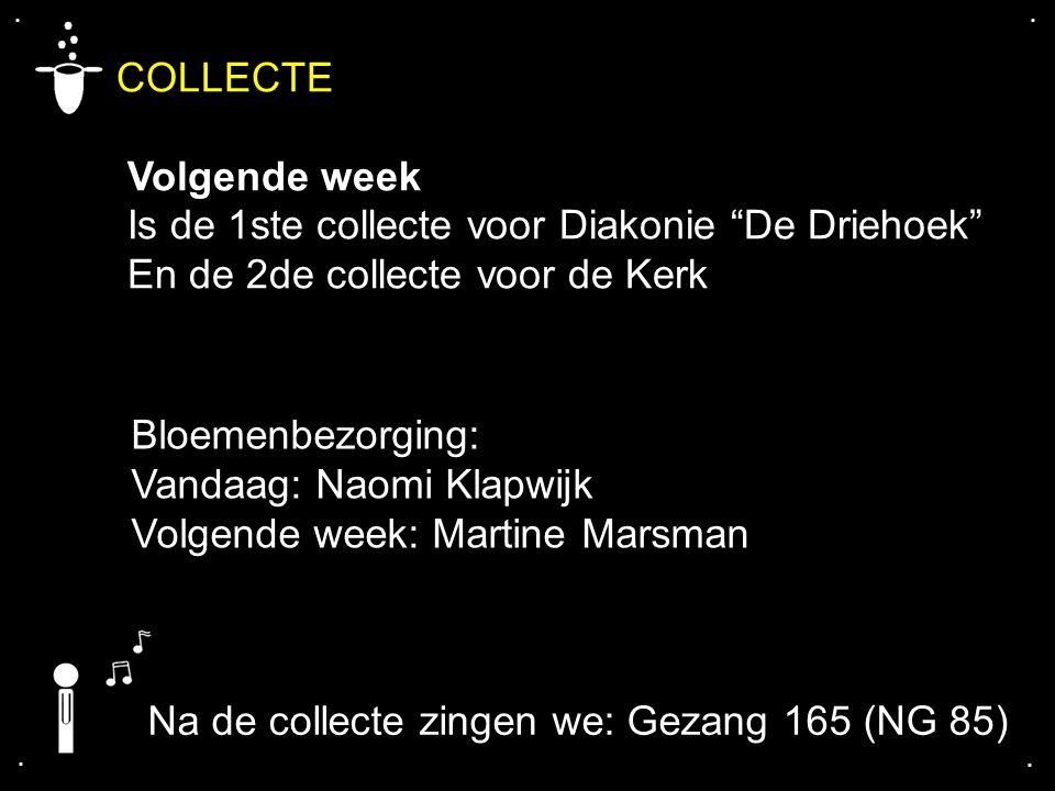 """.... COLLECTE Volgende week Is de 1ste collecte voor Diakonie """"De Driehoek"""" En de 2de collecte voor de Kerk Bloemenbezorging: Vandaag: Naomi Klapwijk"""