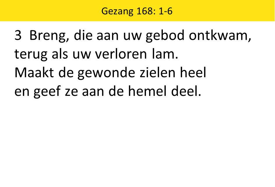 Gezang 168: 1-6 3 Breng, die aan uw gebod ontkwam, terug als uw verloren lam.
