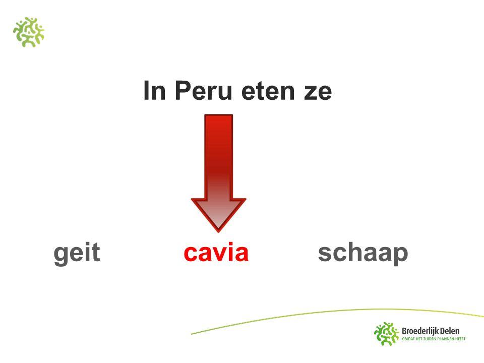 In Peru eten ze geit cavia schaap