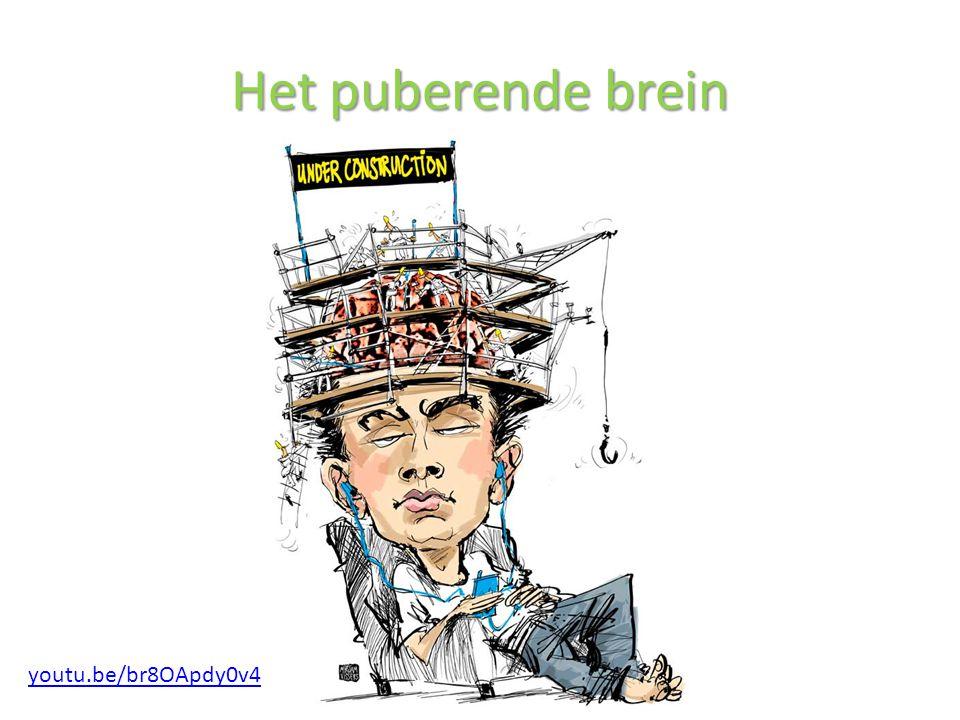 Het puberende brein youtu.be/br8OApdy0v4