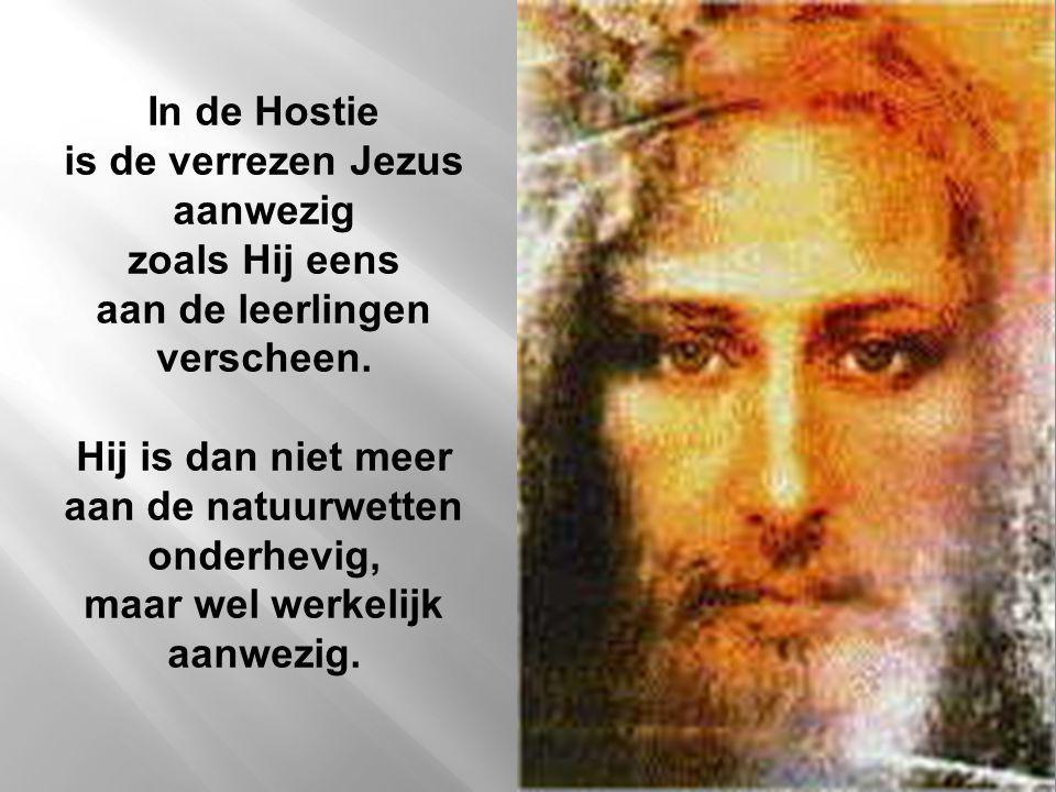In de Hostie is de verrezen Jezus aanwezig zoals Hij eens aan de leerlingen verscheen. Hij is dan niet meer aan de natuurwetten onderhevig, maar wel w