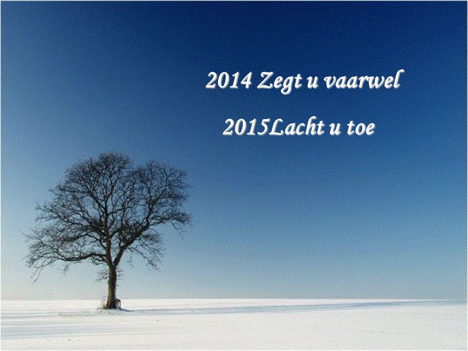 Moge het nieuwe jaar