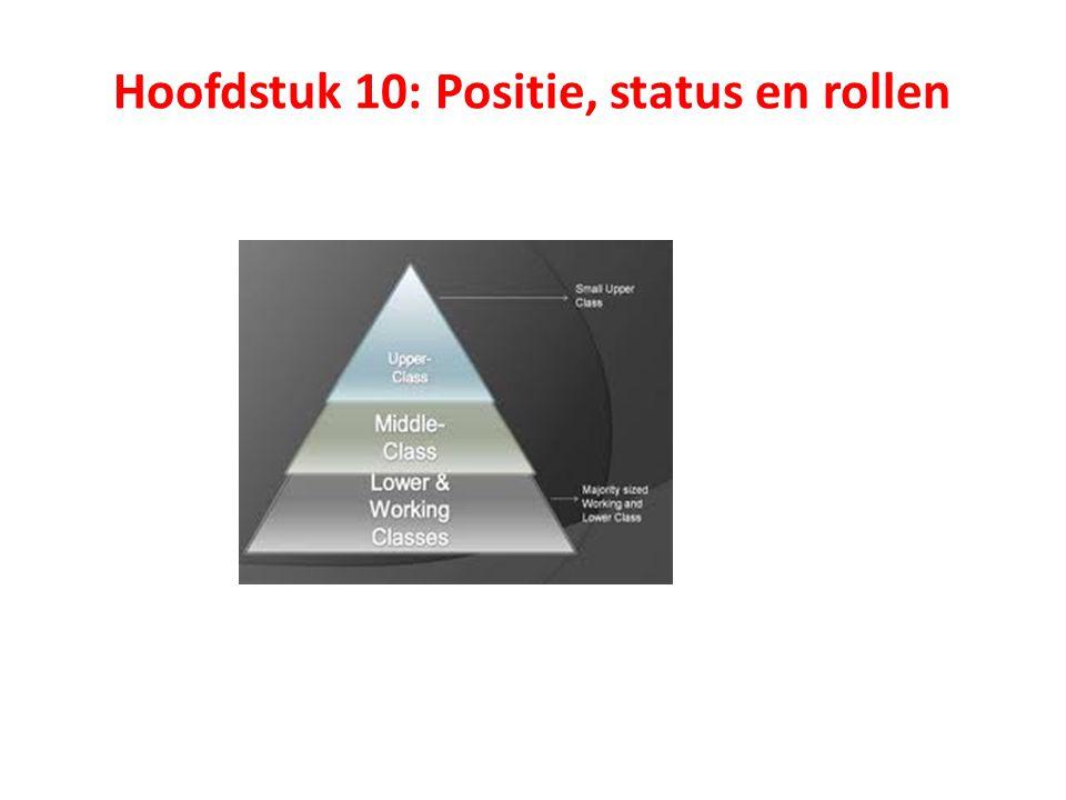 Hoofdstuk 10: Positie, status en rollen