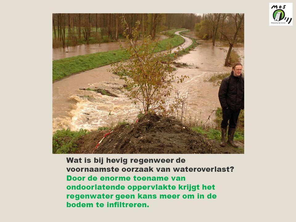 Wat is bij hevig regenweer de voornaamste oorzaak van wateroverlast.