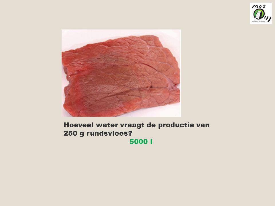 Hoeveel water vraagt de productie van 250 g rundsvlees? 5000 l