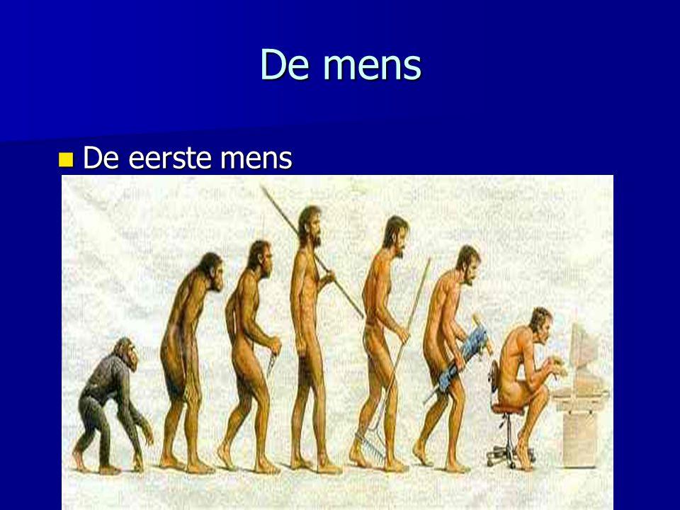 De mens De eerste mens De eerste mens