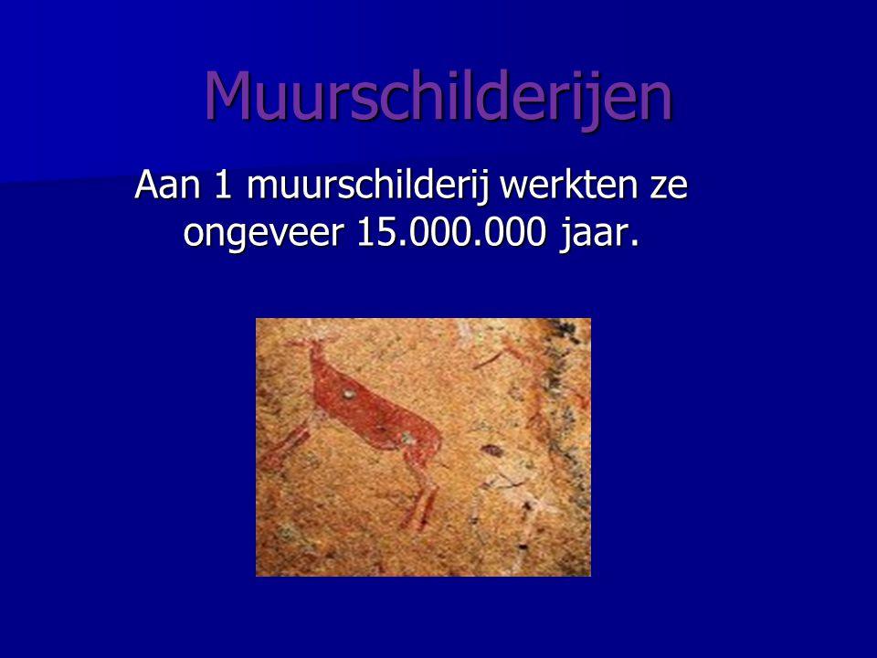 Muurschilderijen Aan 1 muurschilderij werkten ze ongeveer 15.000.000 jaar.