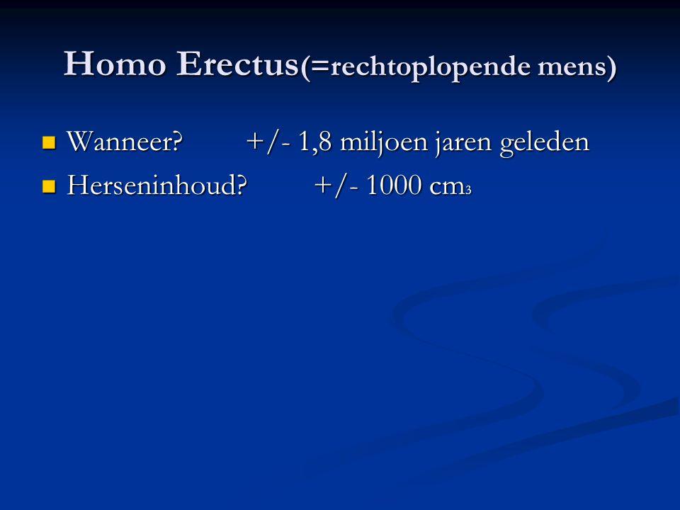 Homo Erectus (=rechtoplopende mens) Wanneer?+/- 1,8 miljoen jaren geleden Wanneer?+/- 1,8 miljoen jaren geleden Herseninhoud?+/- 1000 cm 3 Herseninhou