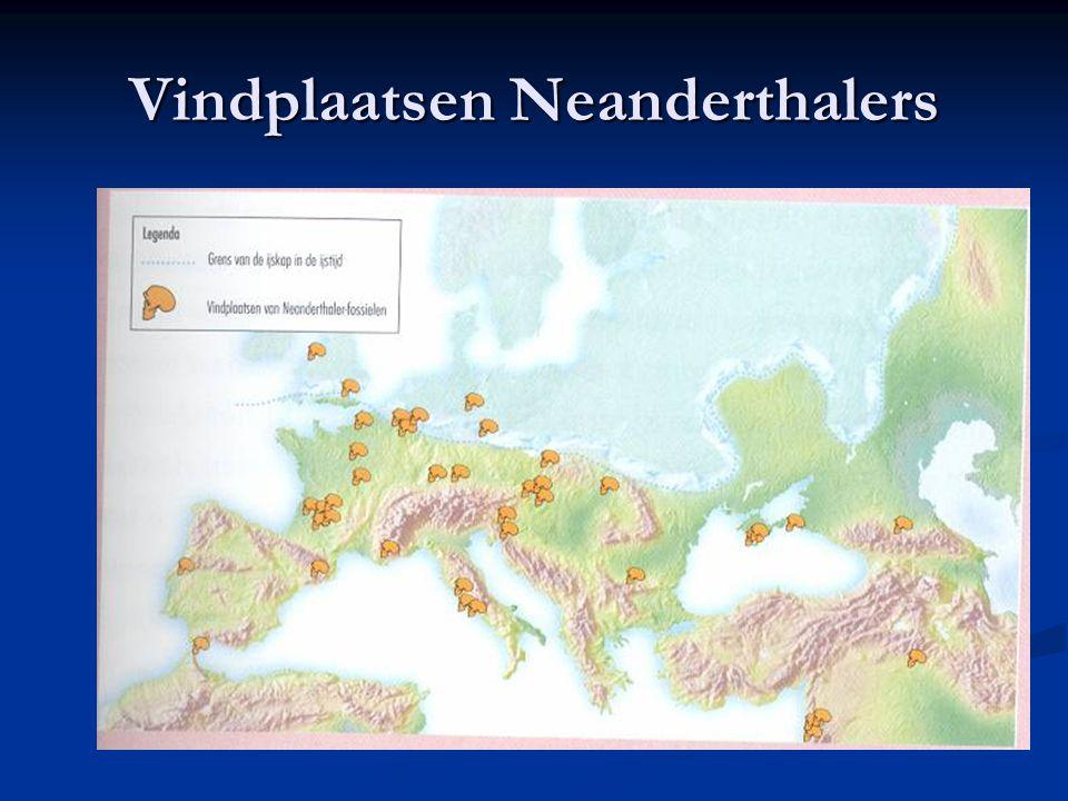 Vindplaatsen Neanderthalers