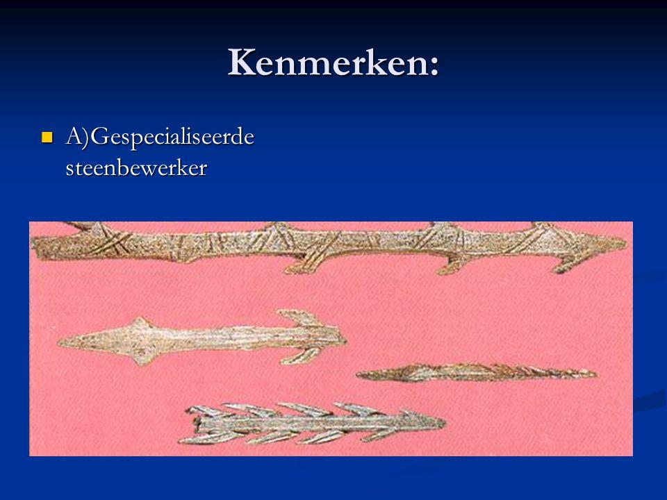 Kenmerken: A)Gespecialiseerde steenbewerker A)Gespecialiseerde steenbewerker