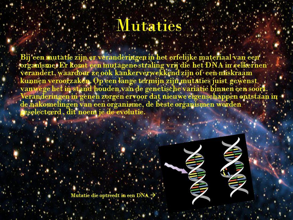 Mutaties Bij een mutatie zijn er veranderingen in het erfelijke materiaal van een organisme.