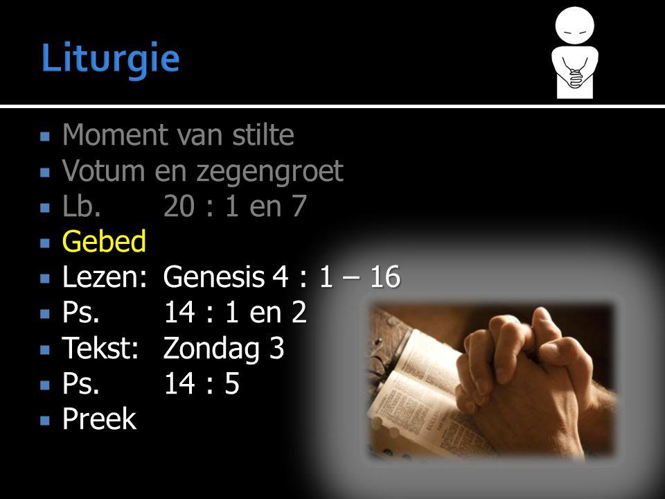  Moment van stilte  Votum en zegengroet  Lb.20 : 1 en 7  Gebed  Lezen:Genesis 4 : 1 – 16  Ps.14 : 1 en 2  Tekst:Zondag 3  Ps.14 : 5  Preek