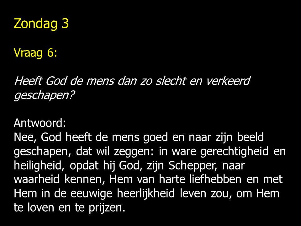Zondag 3 Vraag 6: Heeft God de mens dan zo slecht en verkeerd geschapen? Antwoord: Nee, God heeft de mens goed en naar zijn beeld geschapen, dat wil z