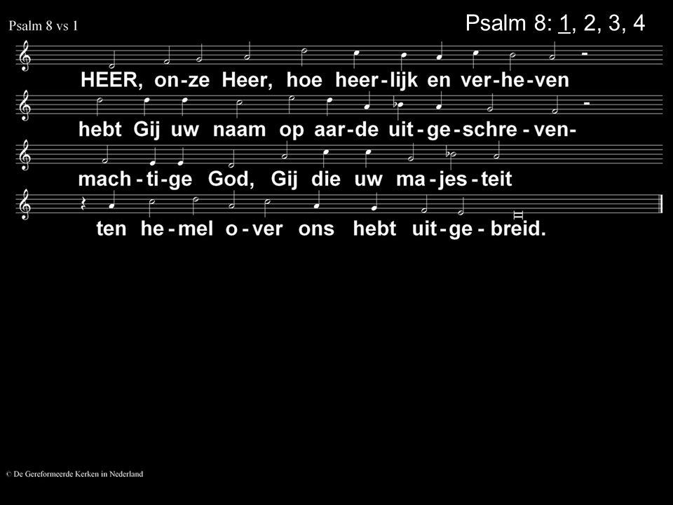 Psalm 8: 1, 2, 3, 4