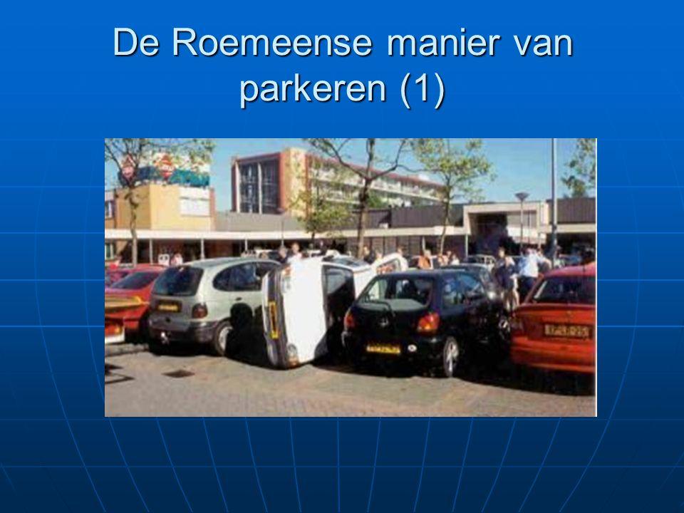De Roemeense manier van parkeren (1)