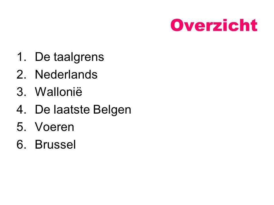 Eurocraten Immigranten De verfransing van Brussel