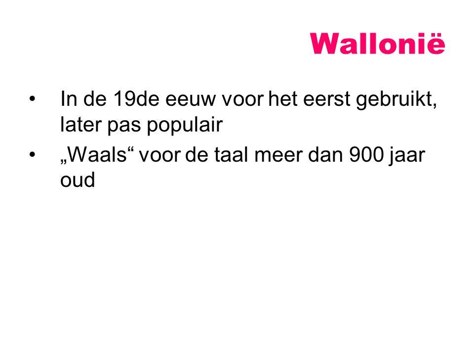 """In de 19de eeuw voor het eerst gebruikt, later pas populair """"Waals voor de taal meer dan 900 jaar oud Wallonië"""